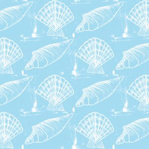 Sea Shells - White on Blue